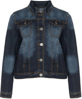 Studio Plus Size Distressed cropped denim jacket
