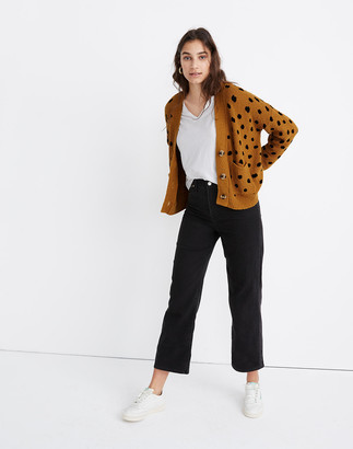 Madewell Hillview Cardigan Sweater in Painted Spots