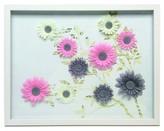 Nobrand No Brand Flower Collage Shadowbox 16x20 - White