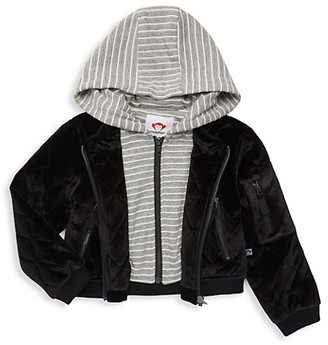 Appaman Little Girl's Girl's Phoebe Hooded Velvet Moto Jacket