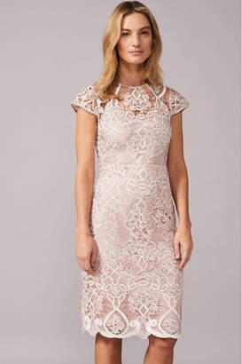 Phase Eight Womens Pink Frances Lace Dress - Pink