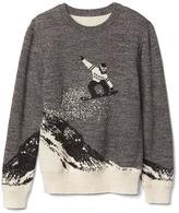 Gap Snowboard intarsia sweater