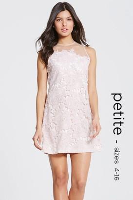 Petite Nude Crochet Sheer Shift Dress