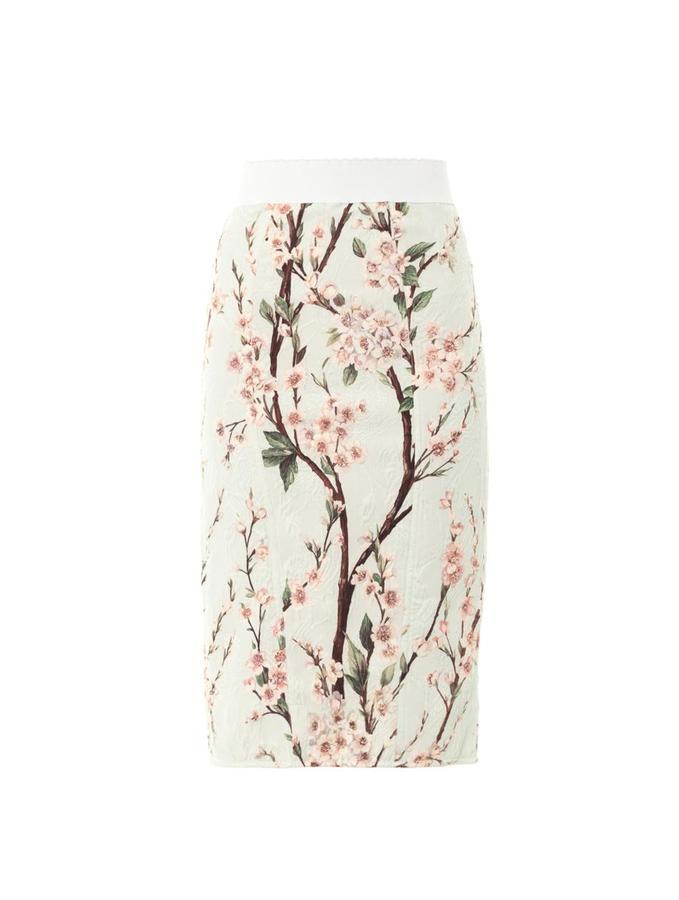 Dolce & Gabbana Almond blossom-print pencil skirt