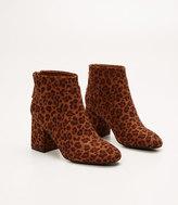 LOFT Leopard Print Ankle Boots