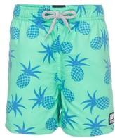 Toddler Boy's Tom & Teddy Pineapple Swim Trunks