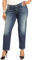 KUT from the Kloth Plus Size Jeans, Catherine Boyfriend, Wise Wash