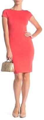 Love...Ady Solid Cap Sleeve Sheath Dress