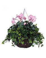 Fashion World Artificial Plant Cyclamen Basket
