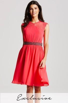 Little Mistress Coral Lace Sleeve Dress