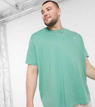Polo Ralph Lauren Big & Tall player logo t-shirt in light green