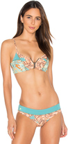 Maaji Hot To Trot Bikini Top