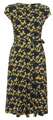 Dorothy Perkins Womens Billie & Blossom Petite Black Orange Printed Midi Skater Dress, Black