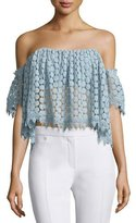 Tularosa Amelia Off-The-Shoulder Lace Crop Top, Mint