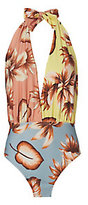 Salinas Spring Floral Deep Front Tie Neck Swimsuit