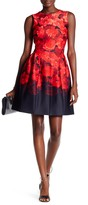 Modern American Designer Floral Cupcake Fit & Flare Dress
