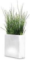 Design Within Reach Vaso Rettangolare Illuminated Planter