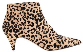 Steve Madden Ankle boots