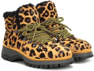 Prada Leopard-print calf hair ankle boots