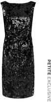 Fenn Wright Manson Universe Dress Petite