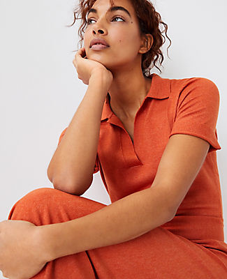 Ann Taylor Polo Sweater Dress