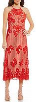 Chelsea & Violet Halter Neck Sleeveless Embroidered Mesh Dress