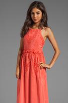 Dolce Vita Rayan Petticoat Embroidery Maxi Dress