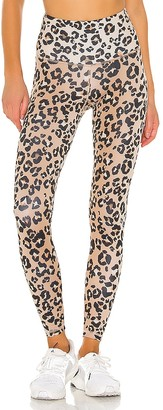 Strut-This Teagan Ankle Pant