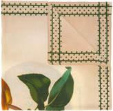 Massimo Alba botanical print scarf