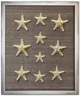 Karen Robertson Framed Knobby Starfish - Brown
