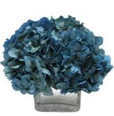 Bougainvillea 6In Hydrangea In Glass Cube