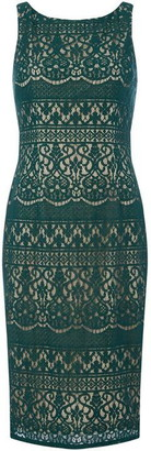 Adrianna Papell Lace sleeveless dress