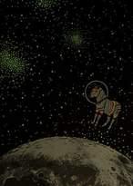 Paul Smith Boys' 8 + Years Black Glow-In-The-Dark 'Zebra In The Moon' Print T-Shirt