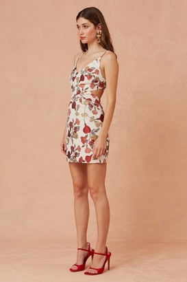 Keepsake FEEL GOOD MINI DRESS natural vine jacquard