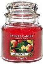 Yankee Candle 114436 Jar Macintosh Spice Figurine