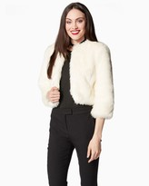 Charming charlie Cropped Faux Fur Coat