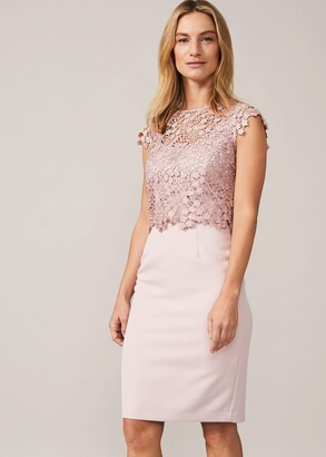 Phase Eight Mariposa Floral Lace Bodice Dress
