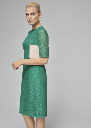 Hobbs Penny Lace Shift Dress