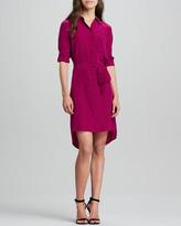 Diane von Furstenberg Prita Button-Front Shirtdress