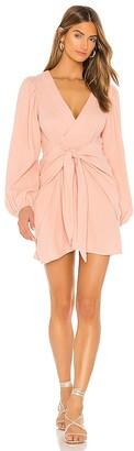 Flynn Skye Jillian Mini Dress