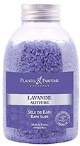 Plants & Parfums of Provence Plantes & Parfums de Provence - French Lavender Bath Salts