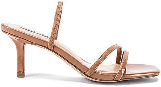 Steve Madden Loft Kitten Heel Sandal