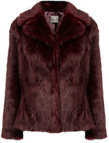 "Oasis MOLLY FAUX FUR COAT [span class=""variation_color_heading""]- Burgundy[/span]"