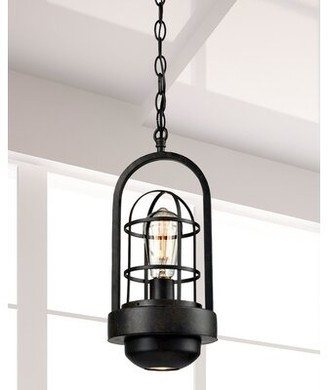 Springdale Lighting Ceiling Lighting Shop The World S Largest Collection Of Fashion Shopstyle