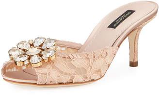 Dolce & Gabbana Keria Jeweled Lace Low-Heel Slide Sandals, Light Pink