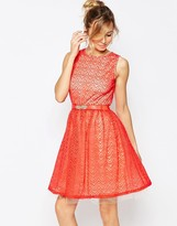 Little Mistress Skater Dress with Lace Overlay