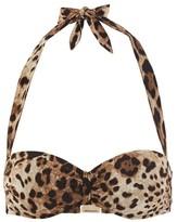 Dolce & Gabbana Leopard bikini top
