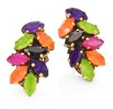 Erickson Beamon Technicolor Crystal Stud Earrings