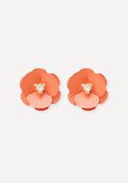 Bebe Oversize Flower Earrings