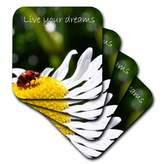 3dRose cst_23636_3 Inspirational Ladybug Ceramic Tile Coasters, Set of 4
